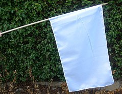 flag on stick